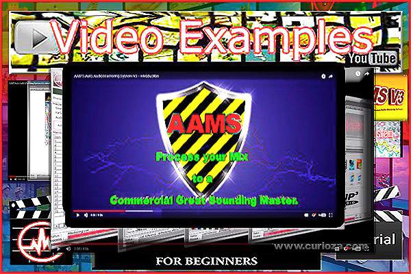 AAMSvideoexamples
